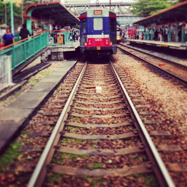 #train, no, #tram, no, #mtr, no, it's light rail #tracks. #hongkong #hk #hkig