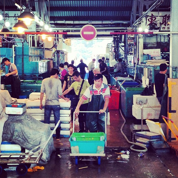 The #aberdeen #wholesale #fish #market. #hongkong #hk #hkig