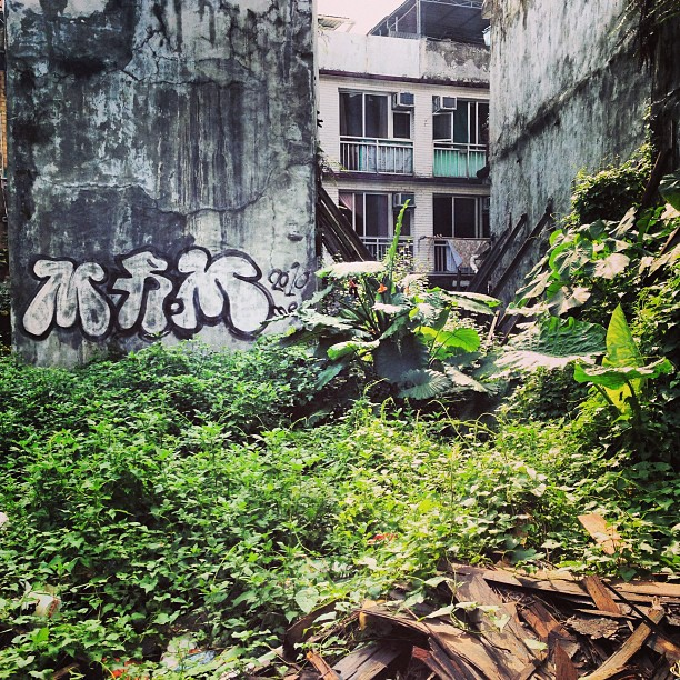 #concrete, #graffiti, #weeds and #wood. An abandoned plot of land in between houses. #hongkong #hk #hkig
