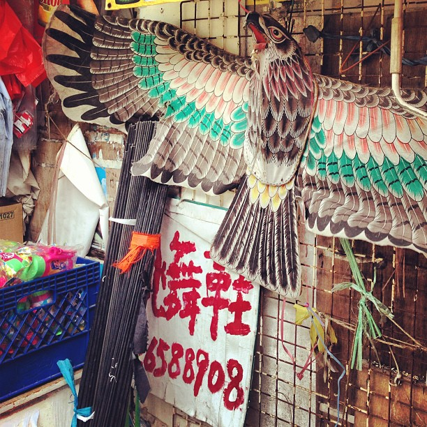 A #eagle #kite for sale from a #street #toy #stall in #taipo. #hongkong #hk #hkig