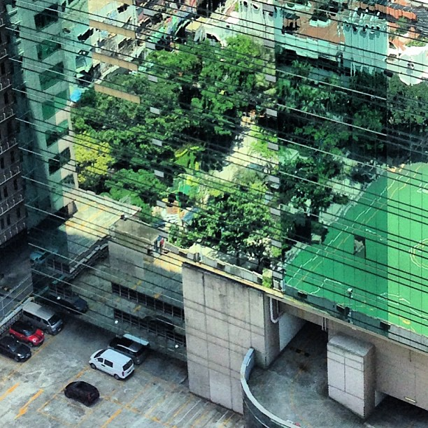 Illusion - #reflections of a #field and #trees in a #buildings #glass facade. #hongkong #hk #hkig