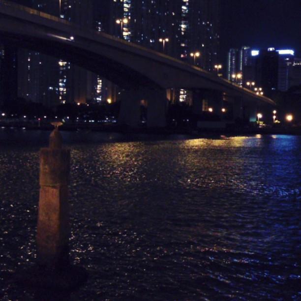 This is quite literally a #whpmovingphotos shot. It's a photo that moves. The #tsingyi #waterfront #promenade. #hongkong #hk #hkig #hkvideo #hongkongvideo #instagramvideo #instavideo #instavid