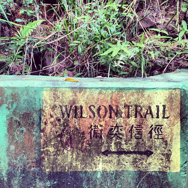 So there's an entry point to the #wilsontrail near #lamtin / #yautong. #hiking #hongkong #hk #hkig #trail