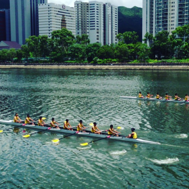 #boat #rowing practice on the #ShingMun #river in #ShaTin. Practicing for #dragonboat races, maybe? #hongkong #hk #hkig #instavid #hkvideo