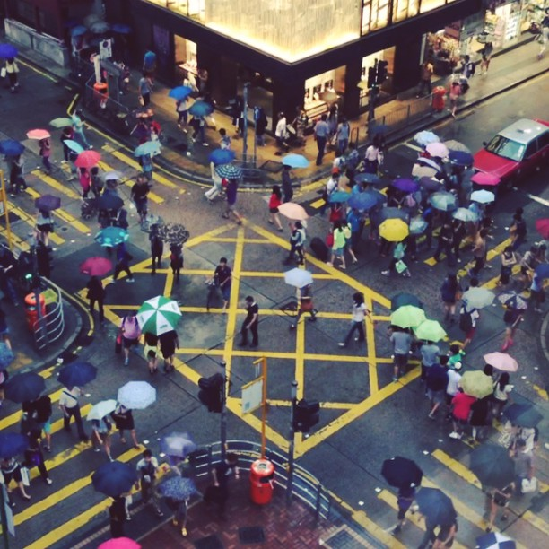 #umbrella #dance on a #rainy day - a #pedestrian #crossing in #TsimShaTsui. #hongkong #hk #hkig #hkvideo #video #instavid