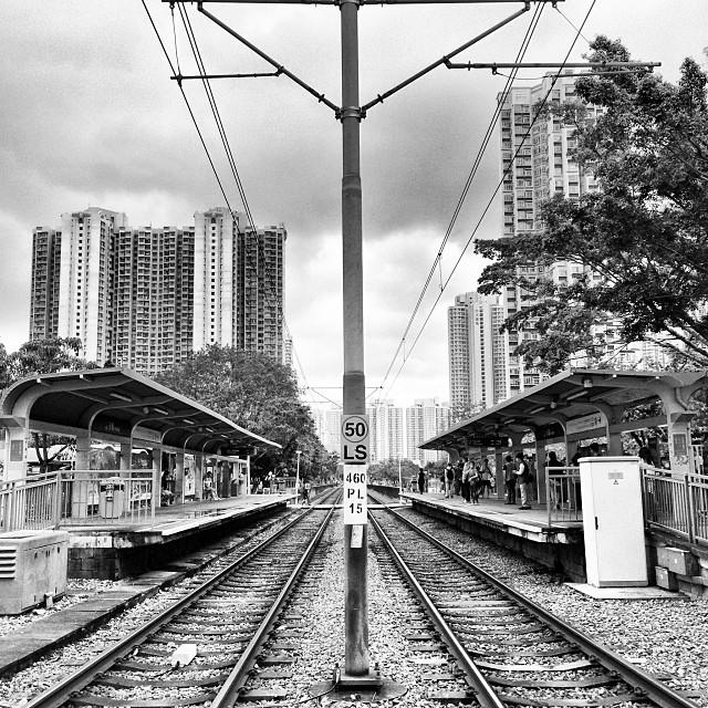 #LRT #train #tracks in #tinshuiwai. #hongkong #newterritories #hk #hkig #mono