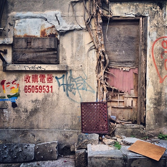 #urban #decay - a #tree has rooted itself into the rotting #doorway. #hongkong #hk #hkig