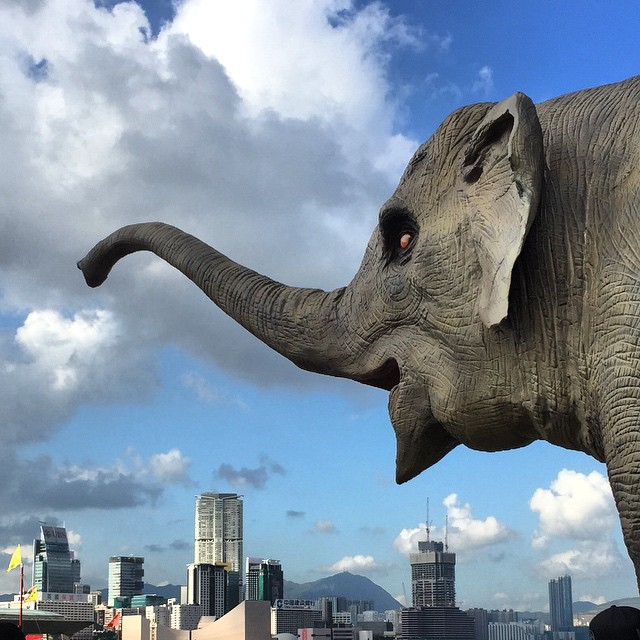 Giant #mechatronic #elephant terrorises #Kowloon! Nope but you can go see it at #LaiYuen #carnival at the #Central Harbourfront. It moves and sprays water from its trunk. #HongKong #hk #hkig