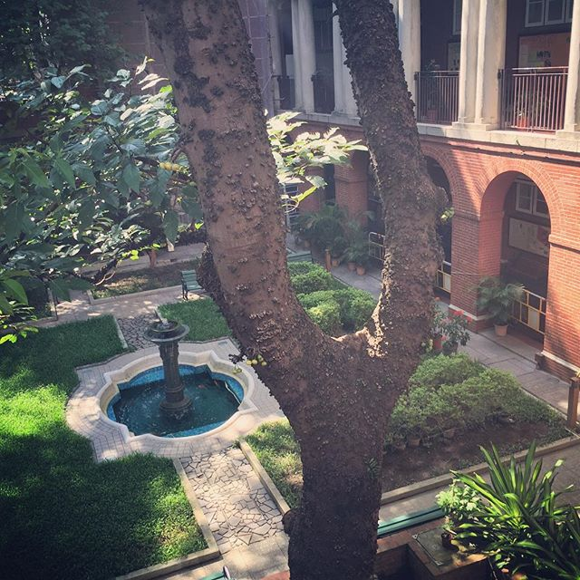 #afternoon at a quiet #courtyard in #kingscollege #HongKong. #HK #hkig