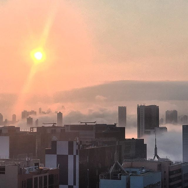 A rare #evening #fog rolls into #kowloon. #HongKong #hk #hkig