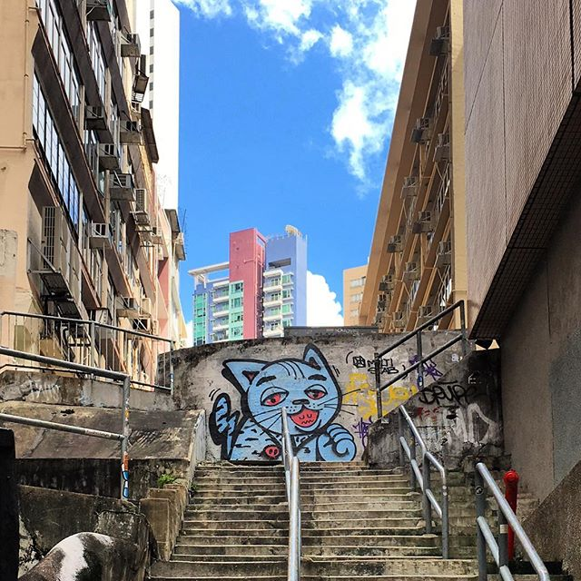 #cat #graffiti and #steps in #Central, #hongkong. #HK #hkig