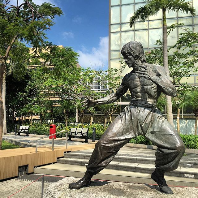 Since the Avenue of Stars is currently closed for construction work, the iconic #BruceLee #statue has been moved to the #GardenOfStars. Eh, it's a park that's been there for ages, they just moved Anita and Bruce there and changed the name. #HongKong #TsimShaTsui #hk #hkig