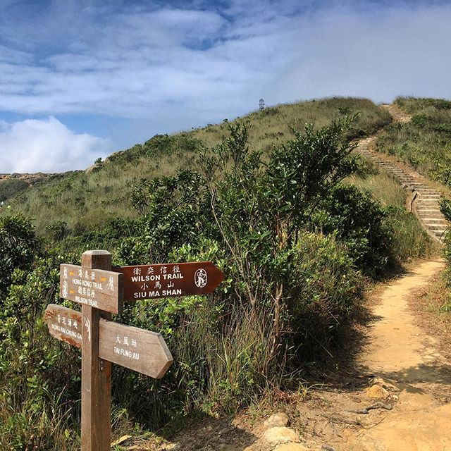 A #signpost at the junction of the #HongKong #Trail and the #WilsonTrail near #SiuMaShan. #hiking #hk #hkig #HongKongTrail