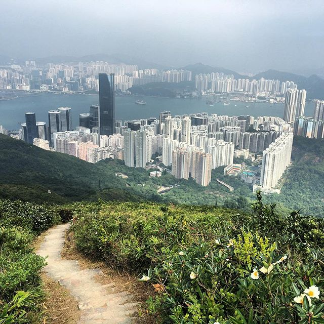 A view of #HongKong from the #WilsonTrail, #hiking down from #SiuMaShan. #trail #hk #hkig