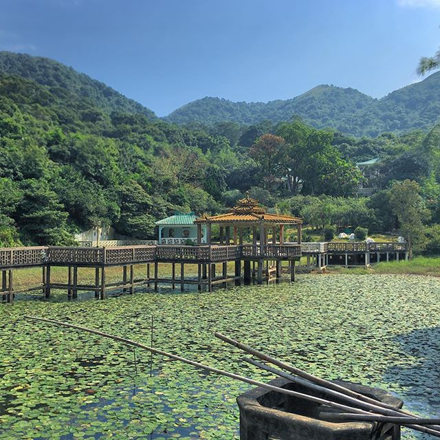 #NgYuen (http://www.hkoutdoors.com/lantau-island/ng-yuen-lantau.html) an abandoned Chinese-style #villa compound in #Lantau. You can find it by #hiking along Section 6 of the Lantau #Trail. #HongKong #HK #hkig #LantauTrail