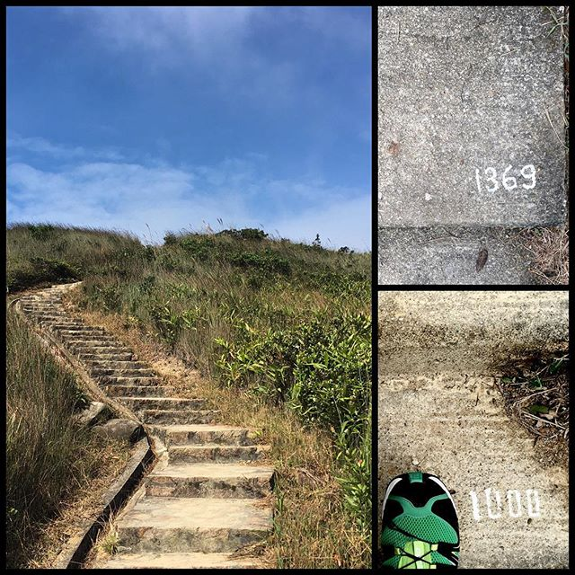 They call the Twin Hills on Section 1 of the #WilsonTrail the #1000steps. Lies, there's 1369 on one side of the hill. If you attack from the other side it's 1209 and that's the paved stairs, non-paved climbs aren't counted. #Hiking #HongKong. #hk #hkig #trail